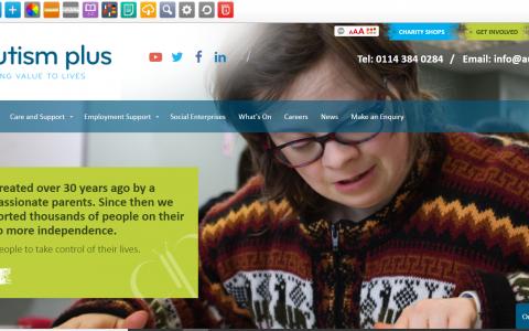 Autism Plus Introduce Accessibility Toolbar